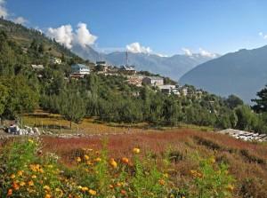 Kalpa - Himachal Pradesh
